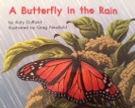 A_BUTTERFLY_IN_THE_RAIN.jpg