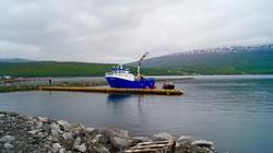 Sjøvegan