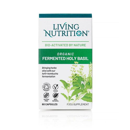 Organic Fermented Holy Basil