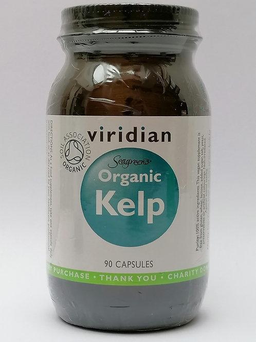 Organic Kelp
