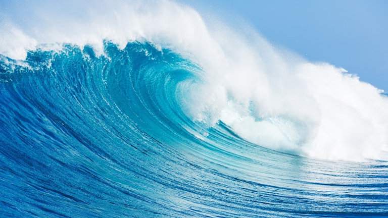The Wave 16oz