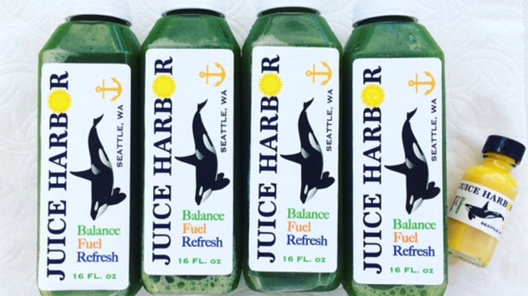 Deep Green 4 Pack ~ 4 Green Sea Lion with a free Turmeric Elixir