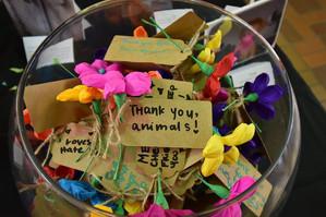 Thank you animals 2.jpg