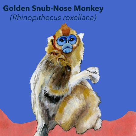 Golden Snub Nose.jpg