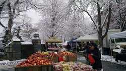 Fort Greene in the winter