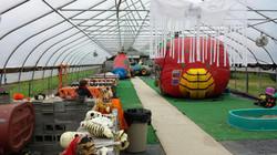 Greenhouse of Fun