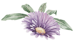Purple Flower with Leaves_edited.png