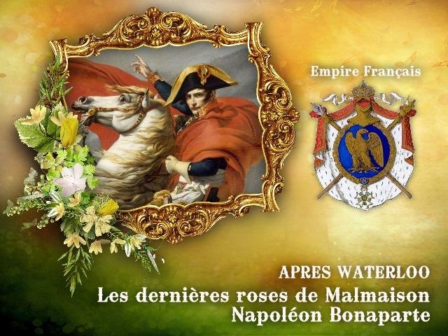 01.Napoléon