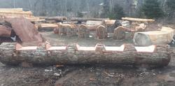 5 Seater Log