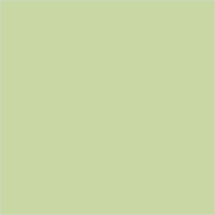 pastel-fistashka-1226-700x700