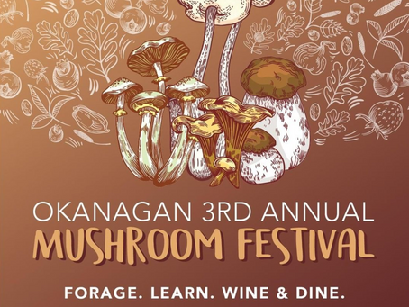 MUSHROOM MANIA... IN THE VALLEY