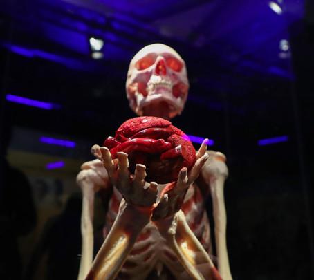 Выставка «Мир тела» под угрозой закрытия