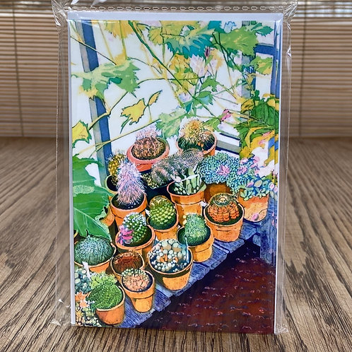 Green Pebble 8-Pack Cards