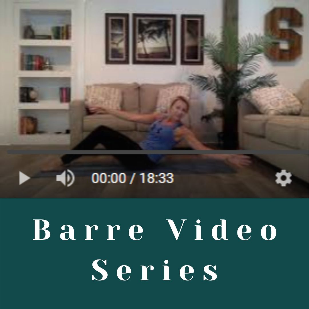 4 Mini Barre Videos