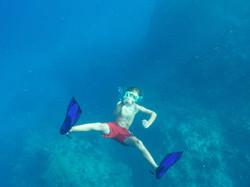 Chatham Bay Freddie Dives Deep