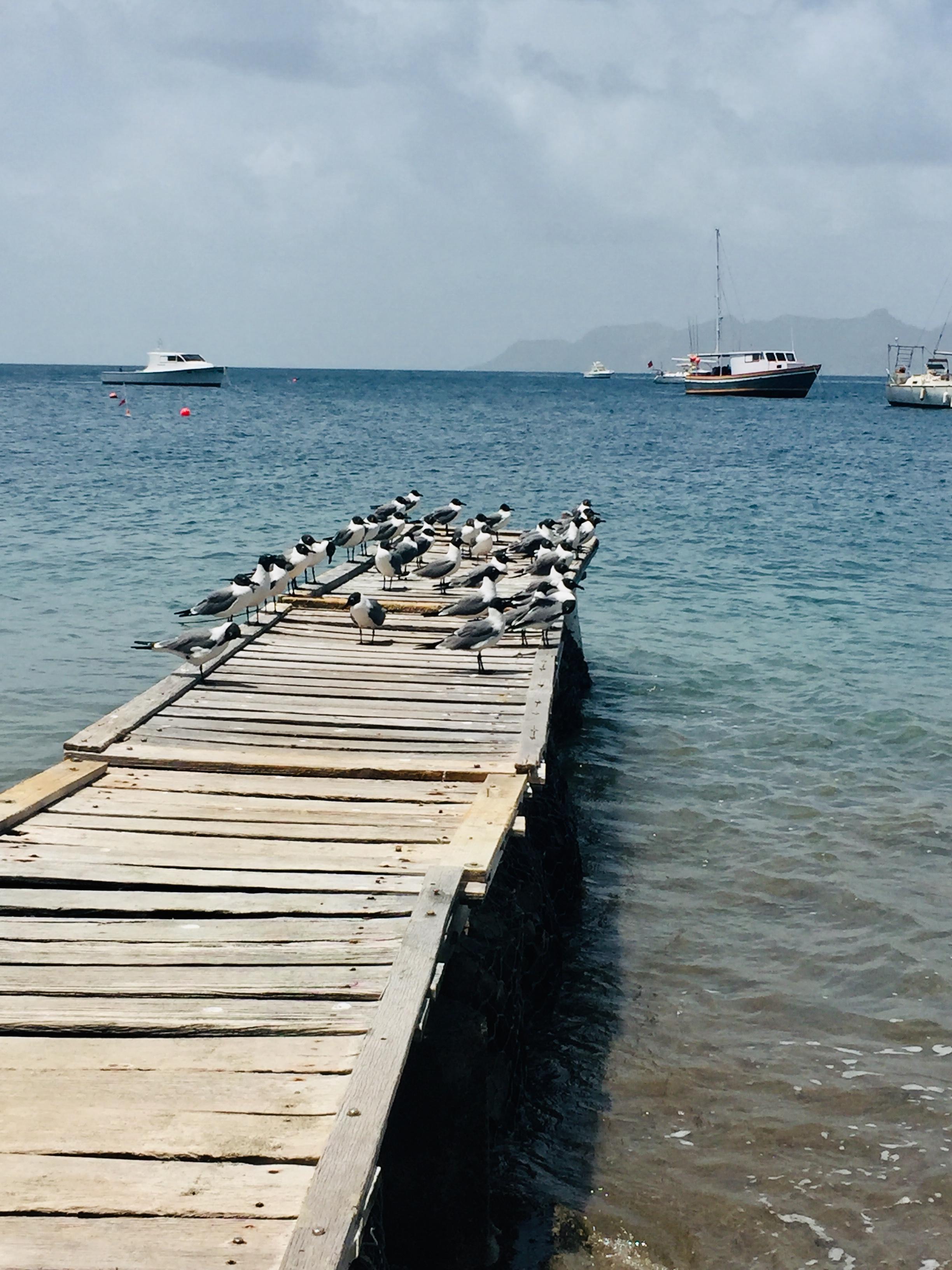 The Dock at Petit Martinique