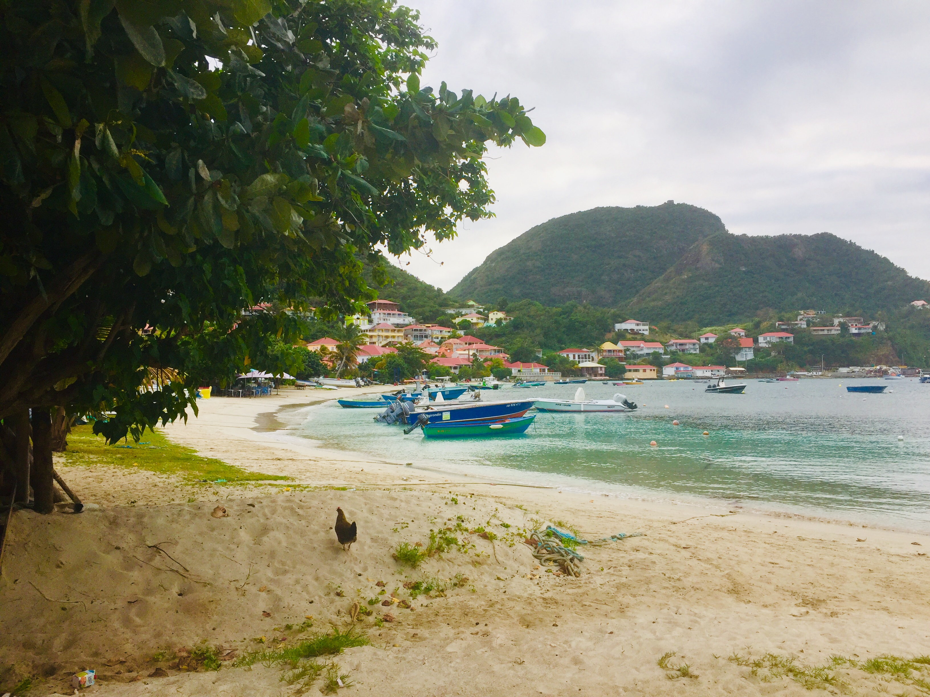 The Baie Bourg de Saintes