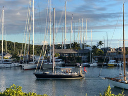 Goodwin Pops Up at English Harbour