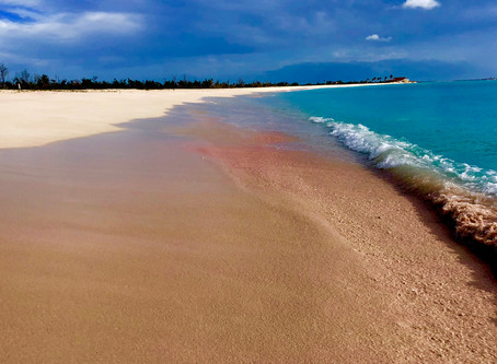 Pink Sand and Frigate Birds