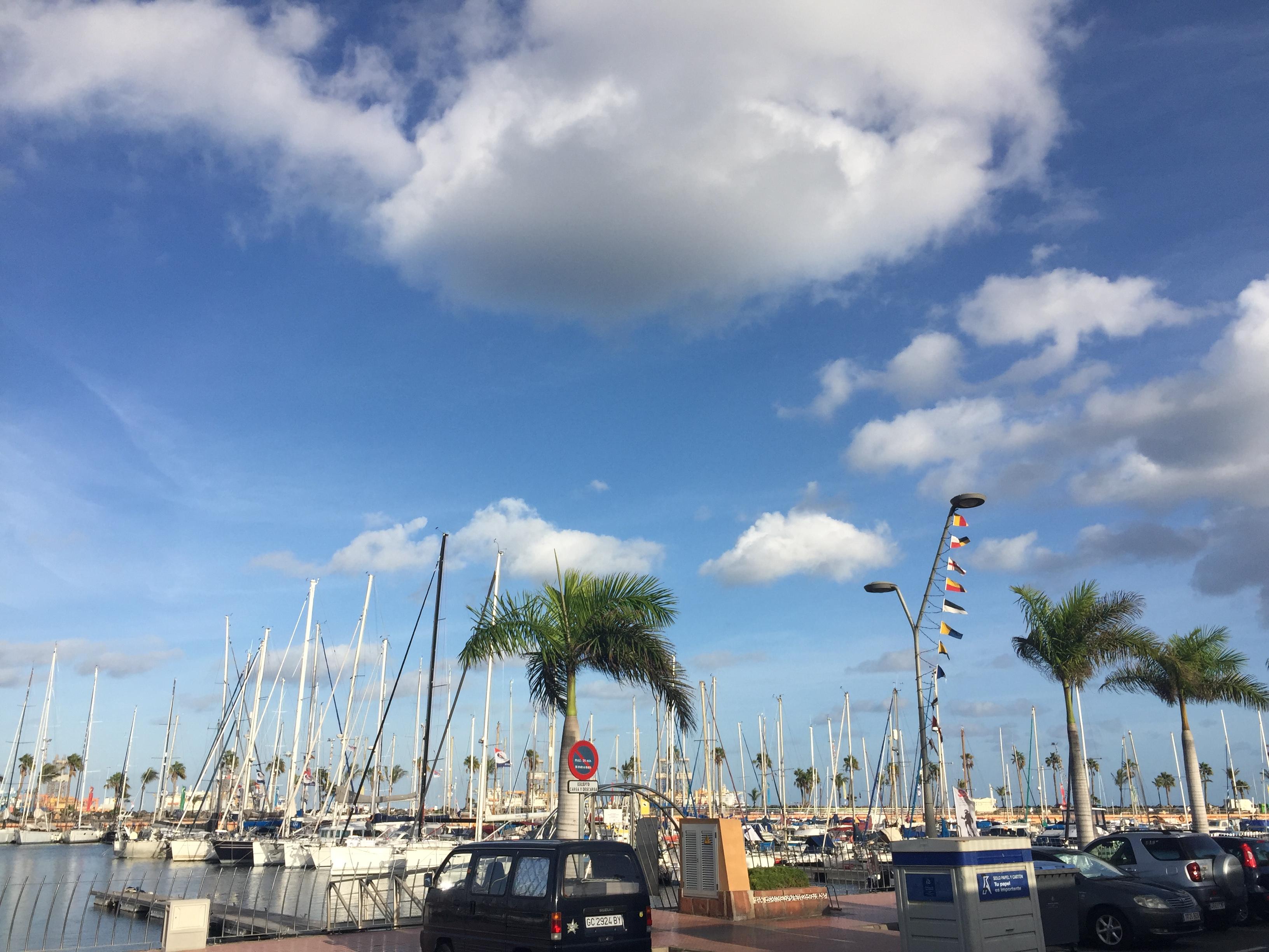 ARC+ Muelle Deportivo Marina