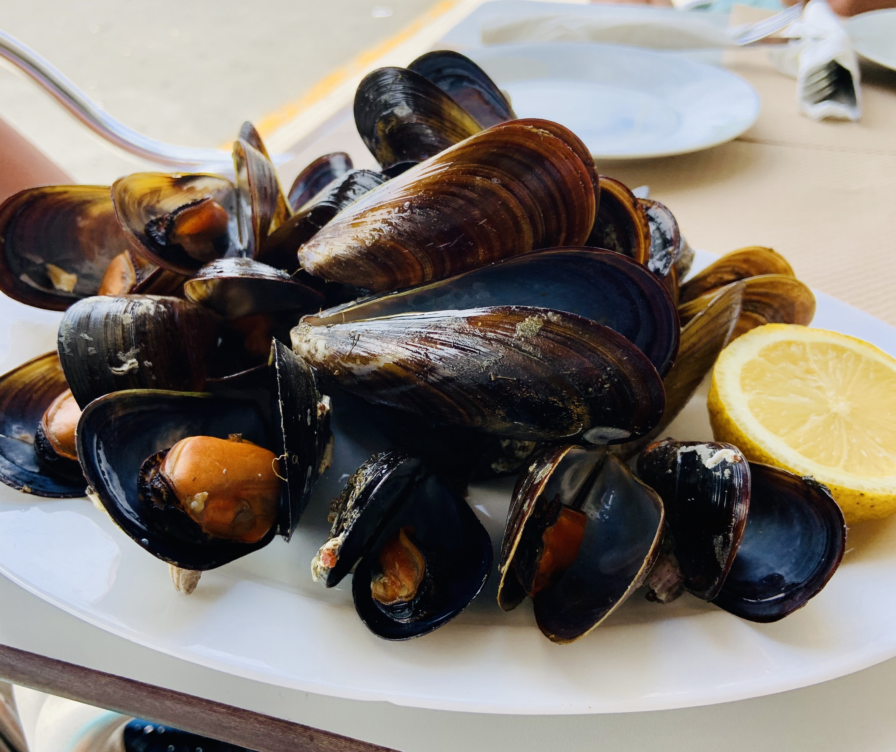 Wonderful Steamed Mussles