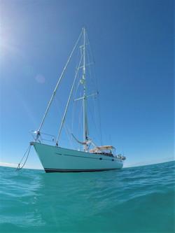 Moana - Barbuda