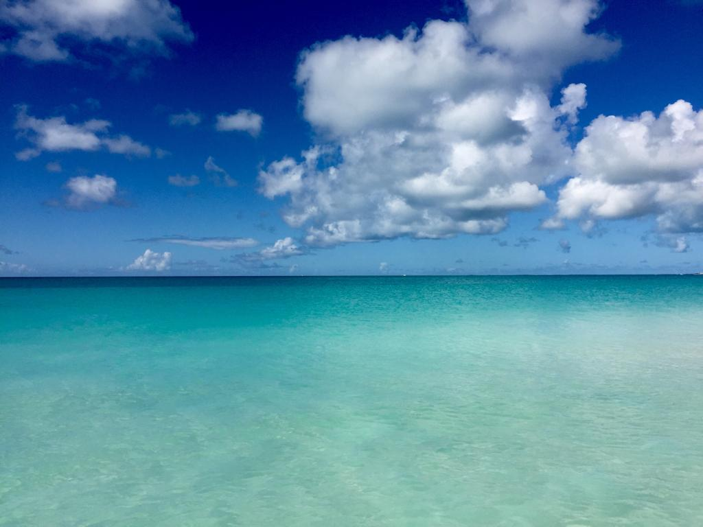 Barbuda!