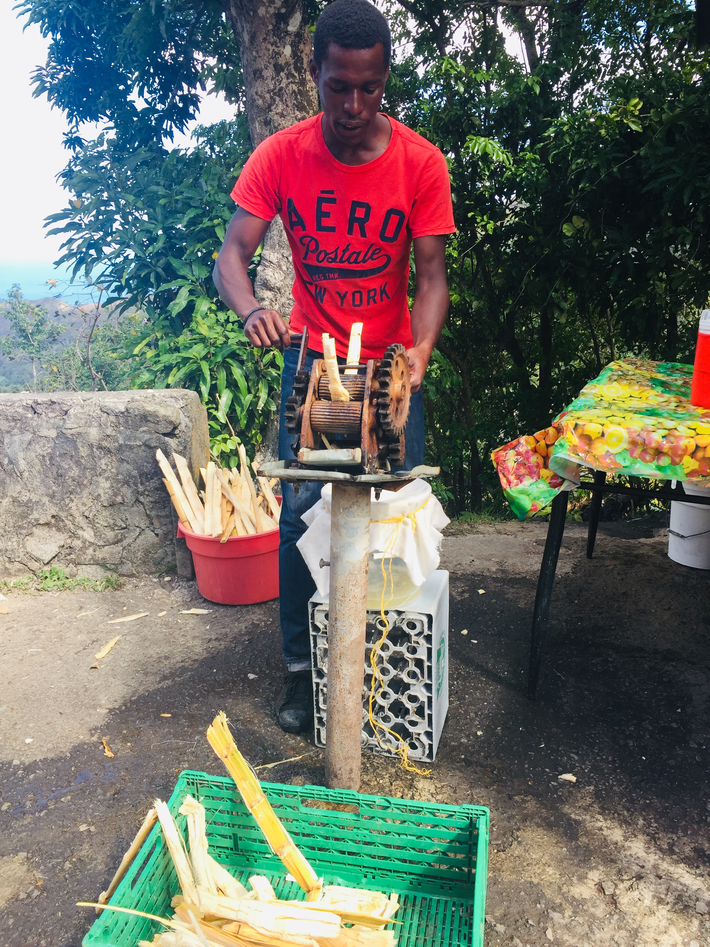 Fresh Cane Juice at Canaries