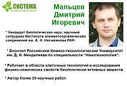 Мальцев Дмитрий Игоревич, Краснов Михаил Сергеевич,