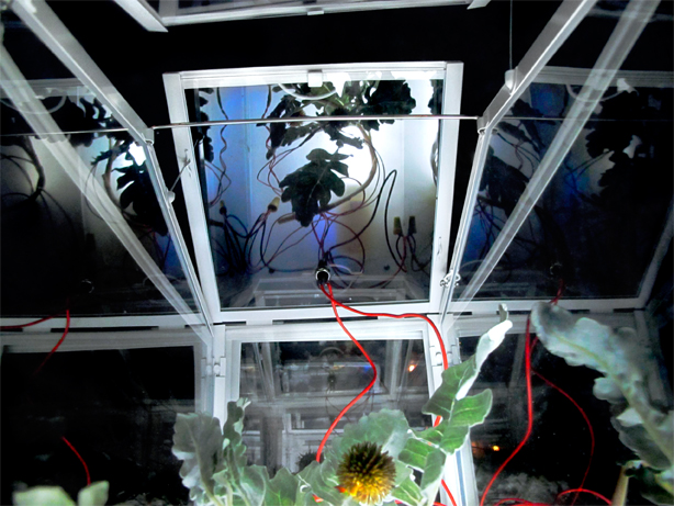 PlantBot Incubator