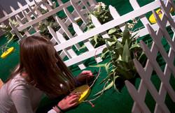 Mothology Exhibition