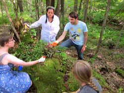 PlantBot Nature Trail