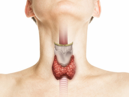 Have you had your Thyroid checked?