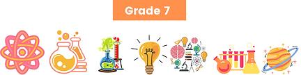 Grade 7 Final.png