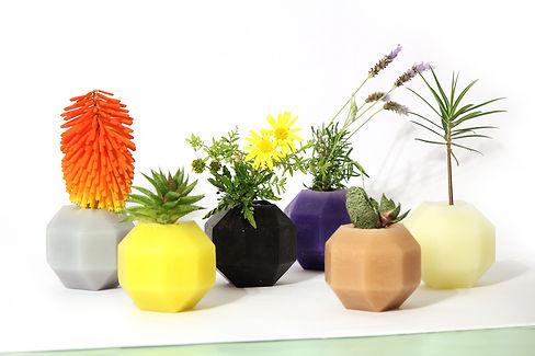 HUGIR_ROMBI_vase_plant.jpg