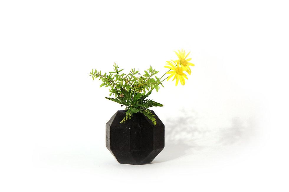HUGIR_ROMBI_black_vase_plant.jpg