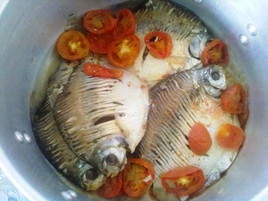 Cooked Pacu