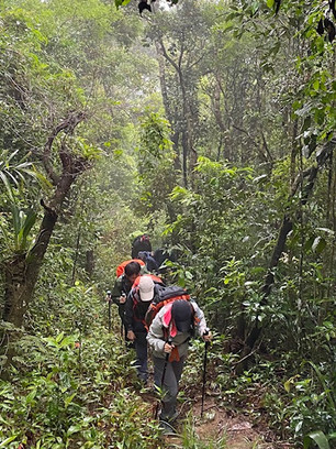 Our trek takes place largely in the shade of the dense forest.