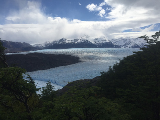 Grey Glacier (W and O circuit)