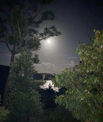 A magical moment, at night, when the moon illuminates the coast.