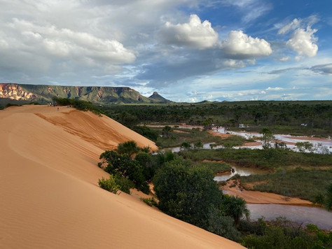 The Jalapão dunes were gradually sculpted with the sand swept from the ridges of the Serra do Espirito Santo (in the background) and carried by strong winds.