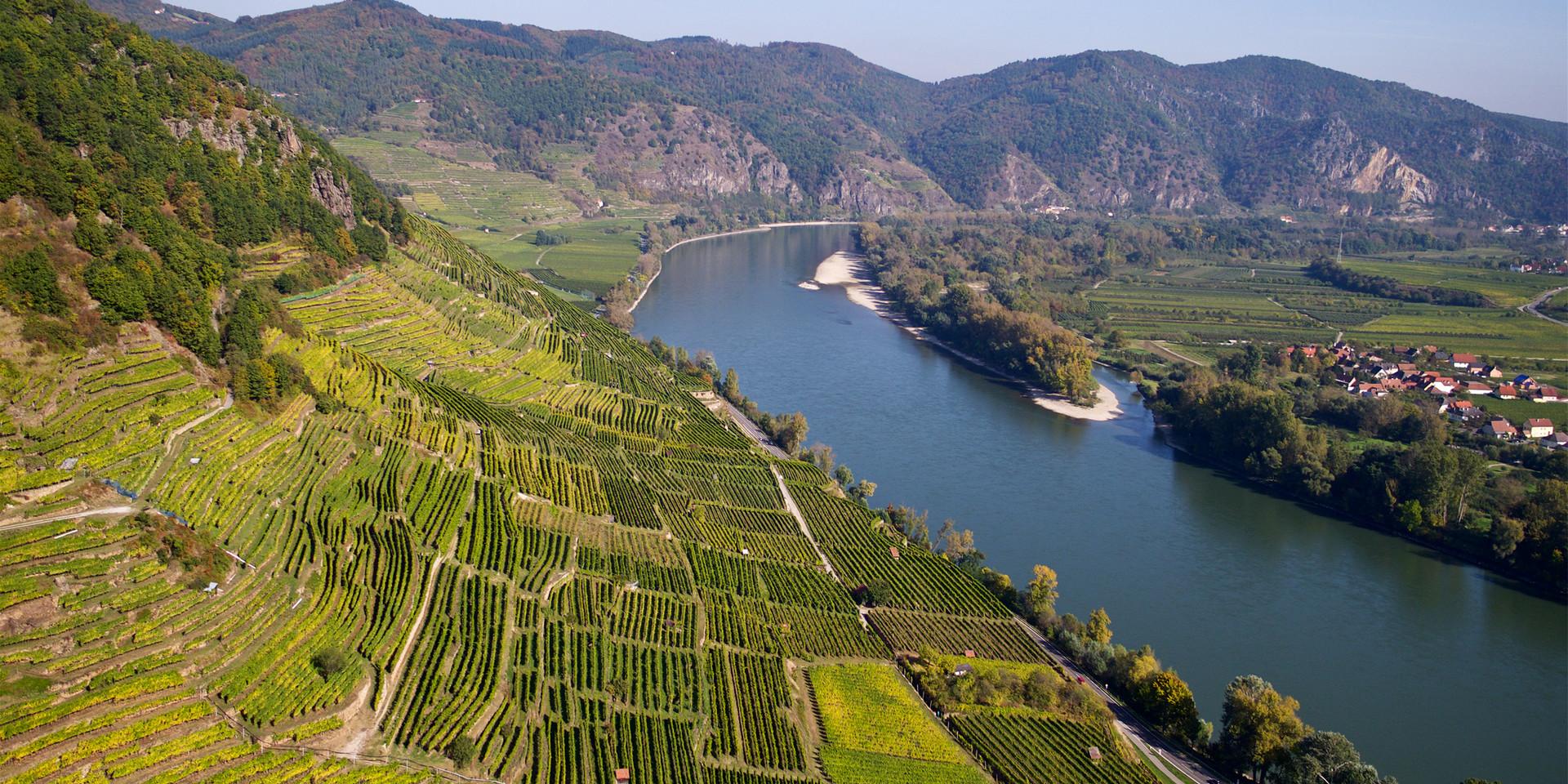 Wachau wine valley (Austria, Day 3)