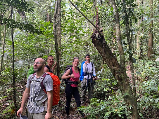 We mainly walk in the shade of the dense Atlantic forest, distinguishing the sea between the trees...