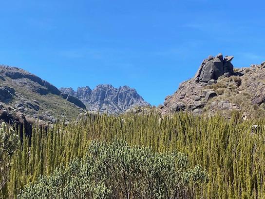 Itatiaia National Park & Agulhas Negras Peak (alt. 2.791 m)