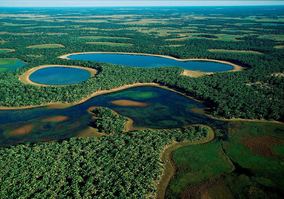 Pantanal Expedition