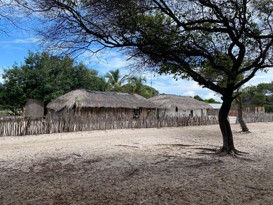 The typical habitat of the Lençóis Maranhenses oases
