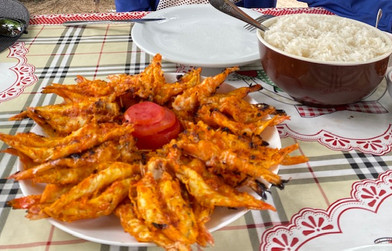 The shrimps from Canto do Atins