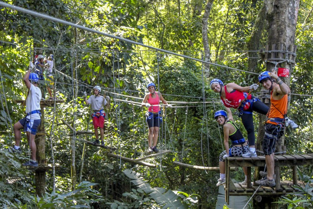 In the forests surrounding Monte Verde, there are several tree climbing routes...