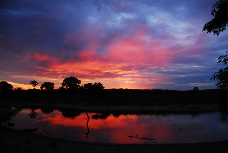 Sunset over the Pantanal