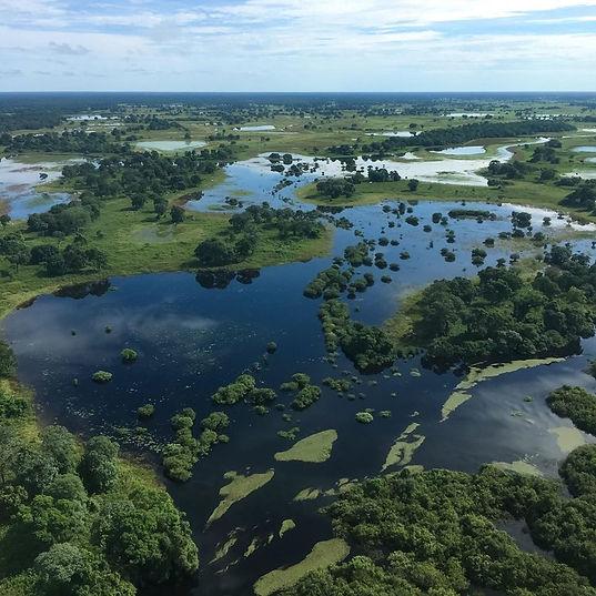 D5_-_Pantanal_aéreo_2.jpg